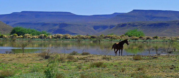 Unusual sight-seeing attractions in Clanwilliam