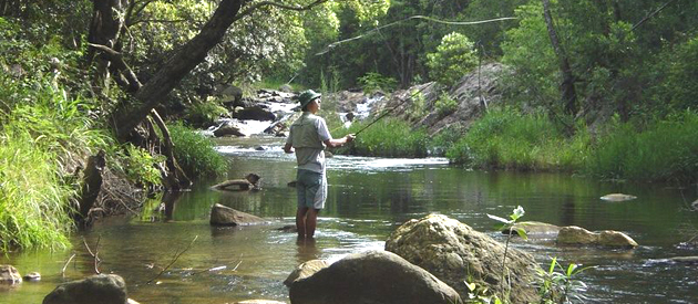 cheerio trout fishing, holiday resort, limpopo, magoebaskloof, cheerio valley, accommodation, haenertsburg, self catering, dstv, trout fishing, activities, limpopo