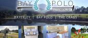 BAYERLEY, FARM ACCOMMODATION & BAY POLO, THE CRAGS