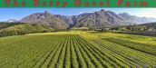 THE BERRY GUEST FARM, SWELLENDAM
