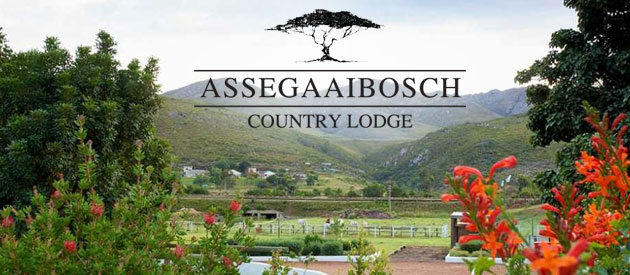 Assegaaibosch Wedding Venue And Country Lodge Businesses