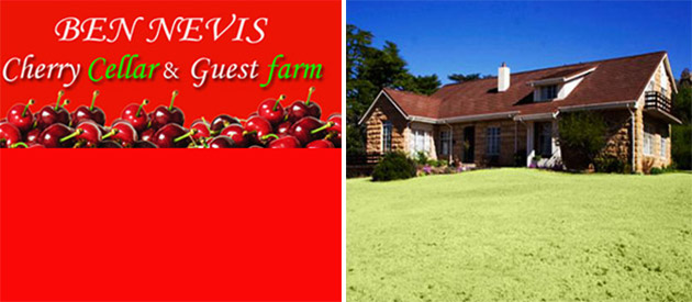 Ben Nevis Cellar And Guest Farm - Clocolan accommodation - Free State