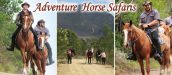 ADVENTURE HORSE SAFARIS, MOSSEL BAY