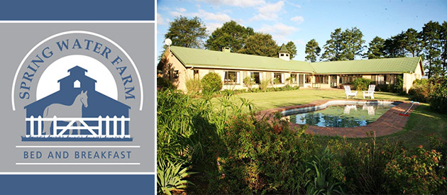 spring water farm, bed and breakfast, b&b, mooi rivier, drakensberg mountains, natal midlands, accommodation, horse stud farm, horse riding, self catering