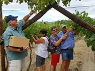 DE KRANS WINES: Your summer destination for fruit picking and leisurely deli lunches