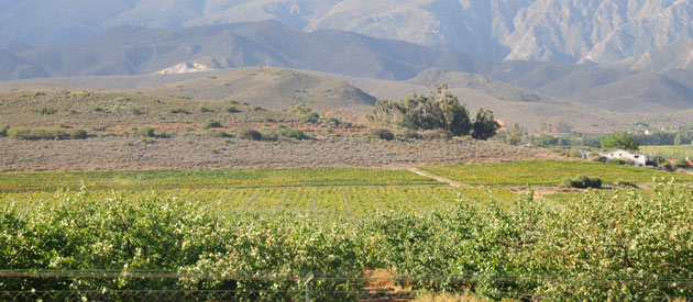 Bonnievale, in the Western Cape, South Africa, Cape Winelands Accommodation