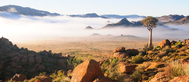 Springbok, in the Northern Cape, South Africa.